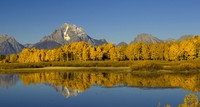 Oxbow Bend in Morning Sun new