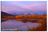 Grand Tetons and Yellowstone Landscapes and Wildlife